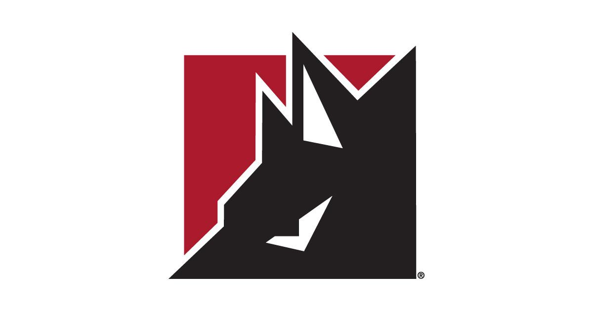 #7 Best Northern Colorado Logo Design–Wolf Robotics