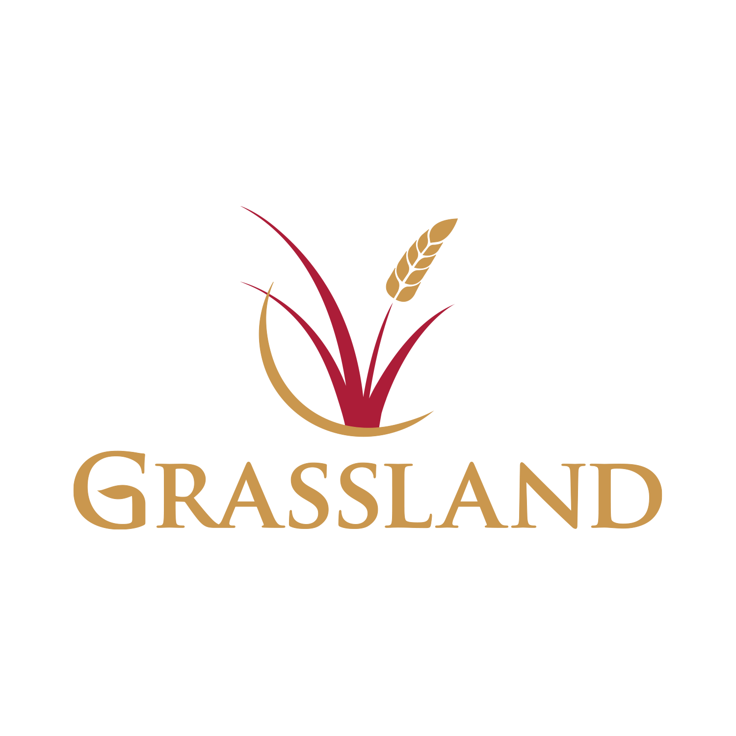 Grassland Homes Logo Design - Holyoke, CO Home Builder